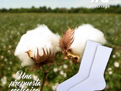 Nuestras fibras naturales: El algodón